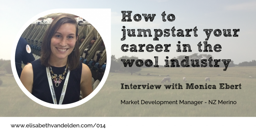 Monica Ebert Interview Wool Academy Podcast 014